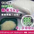 新米『爽羅』SOLA(白米) 愛媛産平成28年度米 プレミア自然栽培・天日干米(2個購入で送料無料)