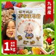 毎日健康ぷちまる君 1kg 熊本県産大麦100%!国産大麦|押麦|食品|低カロリー|雑穀|ダイエット|穀物|食物繊維豊富動脈硬化予防|悪玉コレステロール減少|デブ菌撲滅|押し麦|βグルカン