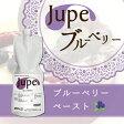 【熊本県産ブルーベリー】JUPE ジュペ ブルーベリー 1kg