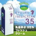 【予約商品1】中沢乳業 生クリーム 九州産 フレッシュクリーム 35% 1000ml 【冷蔵】