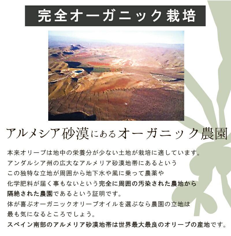レイナ オロデルデシエルト EXVオリーブオイル ピクアル 100ml (緑) Oro del Desierto Picual(常温)