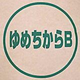 北海道産 パン用超強力粉 ゆめちから 100% 2.5kg(常温)(小分け)