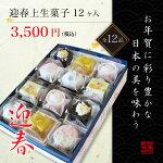 【迎春用上生菓子】新春を鮮やかに彩る和作の上生菓子6種【他商品との同梱不可】
