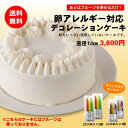 卵アレルギー対応デコレーションケーキ【クリスマス】10P03dec10