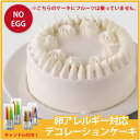 卵アレルギー対応デコレーションケーキ(冷凍配送)(誕生日/お祝い/クリスマス) 【RCP】