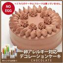 【アレルギー対応】卵アレルギー対応 デコレーションケーキ チ...