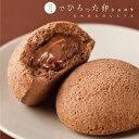 月でひろった卵 ショコラ 8個入 お土産 和菓子 山口 つきたま 果子乃季