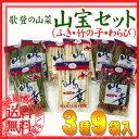 【送料無料】北海道産の山菜セット(ふき・わらび・竹の子) 美味しい山の...