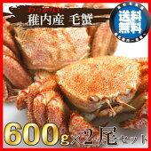 稚内産の極上・毛蟹600g×2尾〜数量限定!