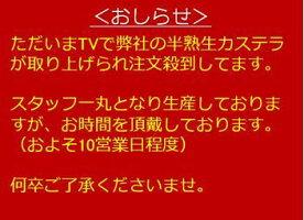 【長崎カステラ森長】生カステラmini(チーズ)食べきりサイズになった新食感カステラ