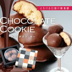 がらんの小石チョコがけクッキー