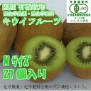 【国産 有機栽培】キウイフルーツ【27個入】Mサイズ(オーガニック) 産地直送!奈良県産