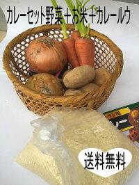 カレー野菜山形産、お米(つや姫山形県産)、カレールウのセットジャガイモ、玉ねぎ、人参、つや姫、業務用カレールウ200g10皿分10皿分野菜セット忙しくて買い物に行けない方、重いので持って帰るのが大変、山形産野菜セット、お米はつや姫