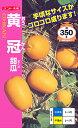 マクワ 黄冠(おうかん)[種子 20ml 入]