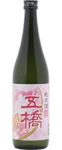 ☆【日本酒】五橋(ごきょう)純米春ラベル720ml