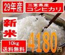 神様がほれた米、三重県産29年産コシヒカリ10kg