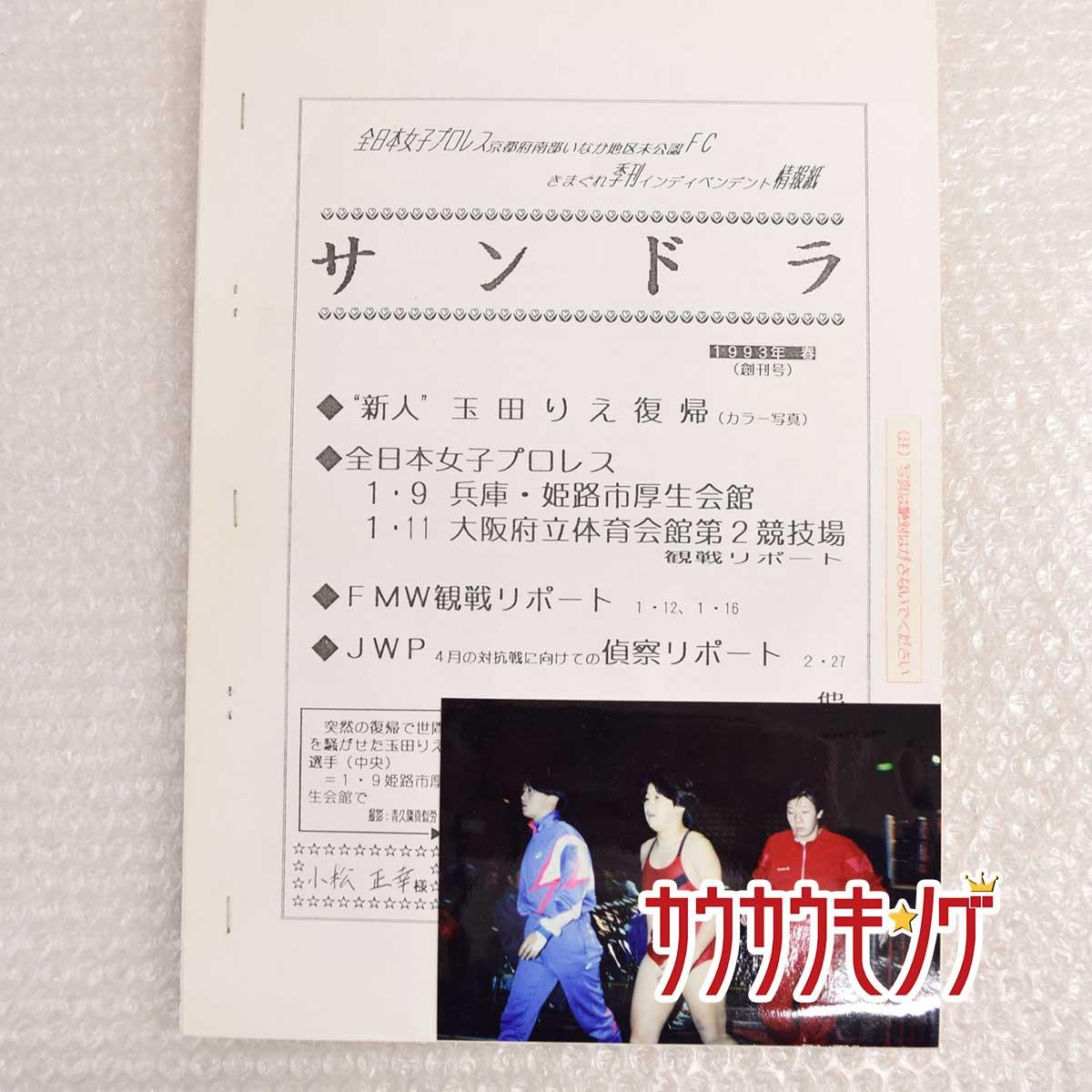 格闘技, プロレス  1993