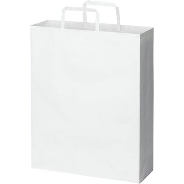 カウネット 紙袋 平紐 白 スタンダード L 50枚