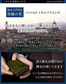 名刺入れミネルバリスシオ【LETTER/横型】
