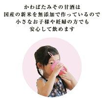 生甘酒米麹ノンアルコール濃縮パウチ