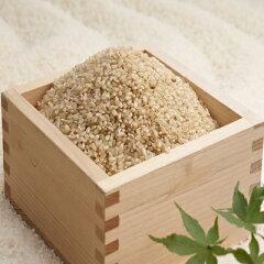 三重県産コシヒカリ(玄米)5Kg
