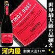 サンテロ ピノ ロゼ 750ml 正規品 イタリア産スパークリングワイン 2年連続で日本で一番売れているイタリア産スパーク kawahc