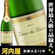 フランス スパークリングワイン ブラン・ド・ブラン ブリュット シャンパン スパーク