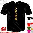 河内國製作所 「しらんけど。Tシャツ」全5色。関西センテンス系漢字おもしろTシャツ 文字T-shirt おもしろてぃーしゃつ 半袖ドライTシャツ メール便は送料無料