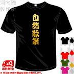 河内國製作所 「洞窟探検Tシャツ」全5色。アウトドアウェア、ケイビング漢字おもしろTシャツ 文字T-shirt おもしろてぃーしゃつ 半袖ドライTシャツ メール便は送料無料