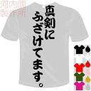 河内國製作所 「真剣にふざけてます。Tシャツ」全5色。センテンス系おもしろTシャツ 文字T-shirt おもしろてぃーしゃつ 半袖ドライTシャツ メール便は送料無料