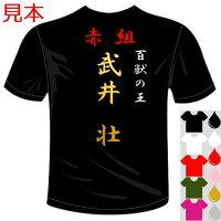 簡単に作れる特攻服系オリジナルTシャツ(カラー5色)おもしろTシャツ。ユニフォーム、イベントやコンサート、体育祭、文化祭に最適。セミオーダーメイド送料無料河内國製作所