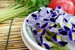 愛知県産エディブルフラワー(食用花)