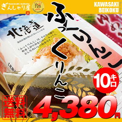 【新米】28年産北海道産ふっくりんこ10kg(5kg×2袋セット)<白米>【送料無料】【北海道米送料込み米お米真空パック選択可】