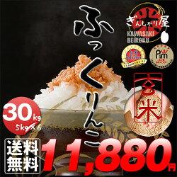 新米29年産北海道産ふっくりんこ玄米30kg(5kg×6袋セット)<玄米/白米/分づき米>【送料無料】【北海道米送料込み米お米真空パック選択可】