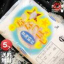 令和元年産 北海道産 ななつぼし 5kg <白米>【送料無料】【北海道米 送料込み 米 お米 真空パック選択可】