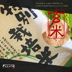 新米30年産栽培地域限定JA新すながわ産特別栽培米ななつぼし玄米10kg(5kg×2袋セット)<玄米/白米/分づき米>【送料無料】【北海道米送料込み米お米真空パック選択可】