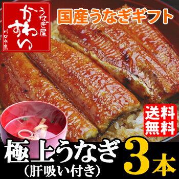 国産うなぎ蒲焼き大サイズ 150g-169g 3本セット「肝吸い付き」【送料無料 贈り物...