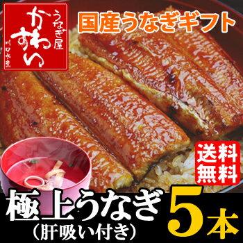 国産うなぎ蒲焼き大サイズ 150g-169g 5本セット「肝吸い付き」【送料無料 贈り物...