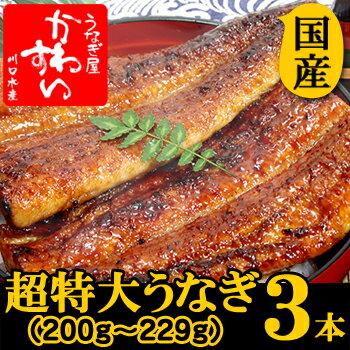 超特大うなぎ蒲焼き 200g-229g×3本セット
