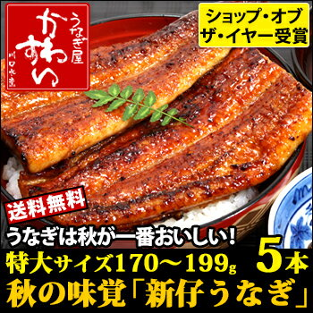国産特大新仔うなぎ 170g-199g×5本【ウナギ 鰻 蒲焼き 旬の味 国内産 贈り...