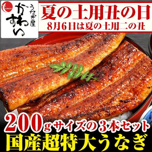 超特大うなぎ蒲焼き 200g-229g×3本セット【ウナギ 鰻 国産 贈り物 残暑見...