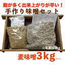 手造り味噌セット 麦味噌3kg(約3.2kg)(無添加・長崎、佐賀県産) 味噌作りキット