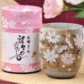 誕生日お茶と秋桜湯呑みセット