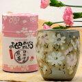 母の日お茶と秋桜湯呑みセット