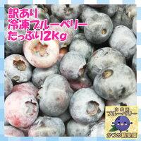 【送料無料】【100%国産】訳あり冷凍ブルーベリー