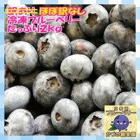 【送料無料】【100%国産】ほぼ訳なし冷凍ブルーベリー