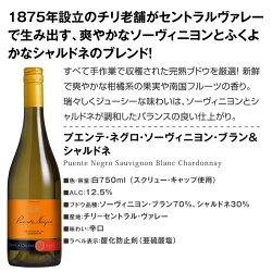 【送料無料】第12弾!1本あたり665円(税別)!!採算度外視の大感謝!厳選白ワイン12本セット