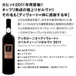 【送料無料】大人気イタリアン【アッポローニオ】濃厚赤ワインセット6本!
