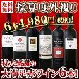 【送料無料】第80弾!採算度外視の謝恩企画!京橋ワイン厳選!特大感謝の大満足赤ワイン6本セット!!|還暦祝い ワインセット