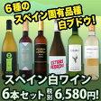 【送料無料】スペインおうちバル白ワイン6本セット!